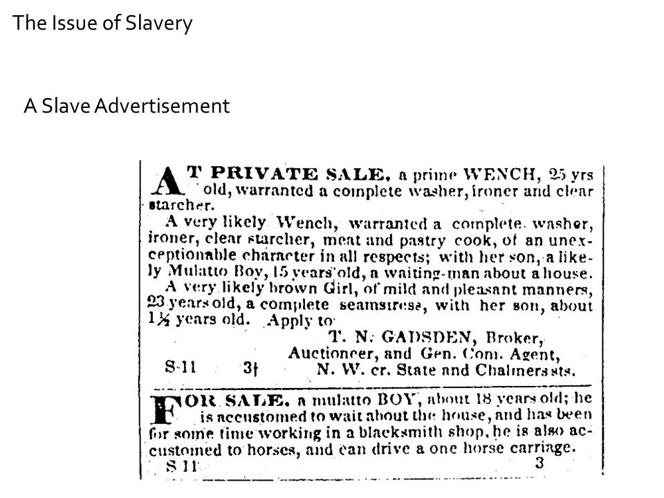 A Slave Advertisement The Issue of Slavery