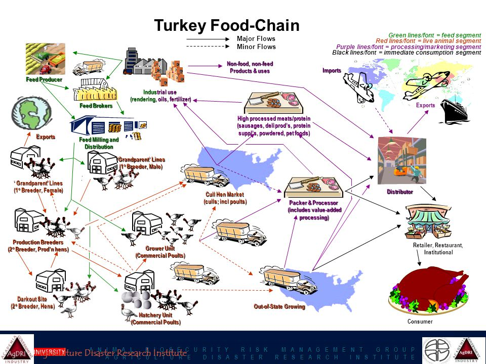 A N I M A L B I O S E C U R I T Y R I S K M A N A G E M E N T G R O U P A G R I C U L T U R E D I S A S T E R R E S E A R C H I N S T I T U T E Turkey Food-Chain Major Flows Major Flows Minor Flows Minor Flows ' Grandparent Lines (1 o Breeder, Female) Retailer, Restaurant, Institutional Feed Producer Distributor Exports Imports Consumer Feed Milling and Distribution Packer & Processor (includes value-added processing) Cull Hen Market (culls; incl poults) Industrial use (rendering, oils, fertilizer) High processed meats/protein (sausages, deli prod's, protein suppl's, powdered, pet foods) Out-of-State Growing Feed Brokers Green lines/font = feed segment Red lines/font = live animal segment Purple lines/font = processing/marketing segment Black lines/font = immediate consumption segment Non-food, non-feed Products & uses Production Breeders (2 o Breeder, Prod'n hens) Exports 'Grandparent' Lines (1 o Breeder, Male) Darkout Site (2 o Breeder, Hens) Hatchery Unit (Commercial Poults) Grower Unit (Commercial Poults) Agriculture Disaster Research Institute