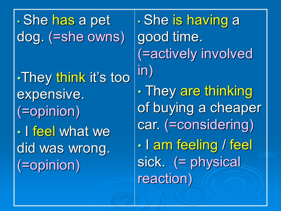 She has a pet dog. (=she owns) She has a pet dog. (=she owns) They think it's too expensive. (=opinion) They think it's too expensive. (=opinion) I fe