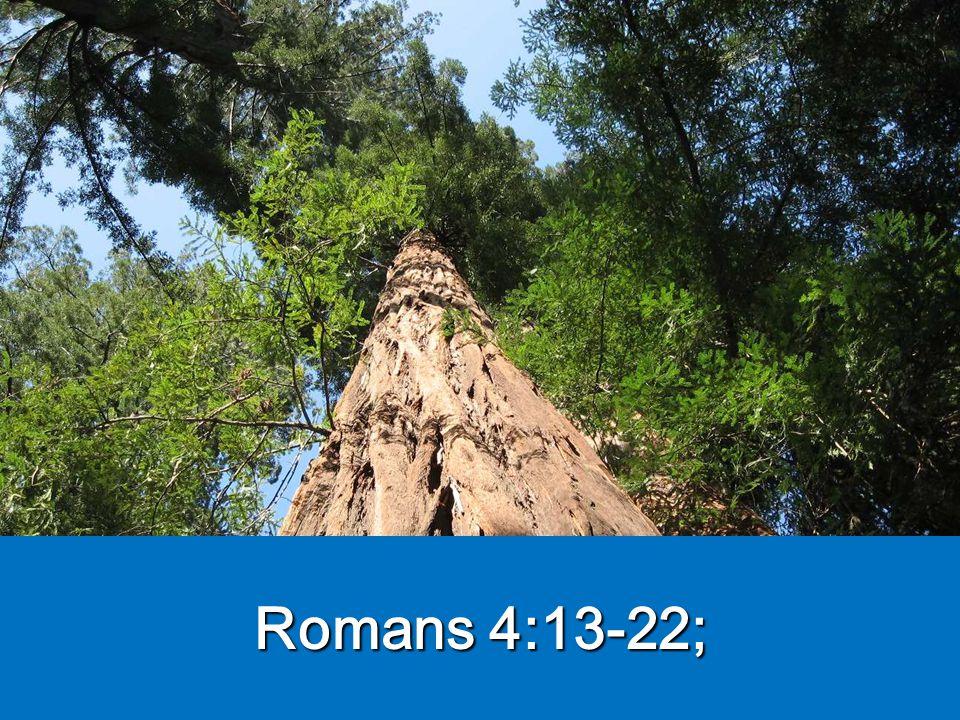 Romans 4:13-22;