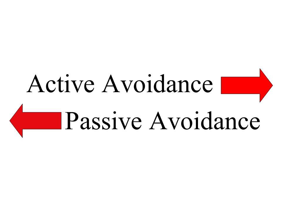 Active Avoidance Passive Avoidance
