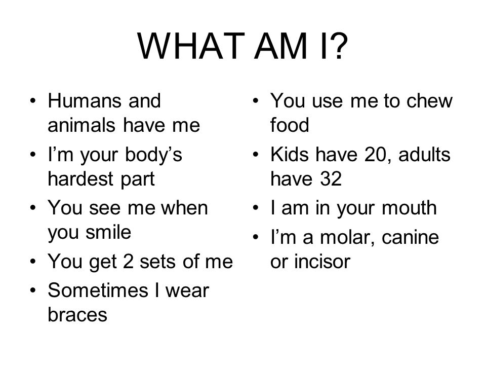WHAT AM I? Humans and animals have me I'm your body's hardest part You see me when you smile You get 2 sets of me Sometimes I wear braces You use me t