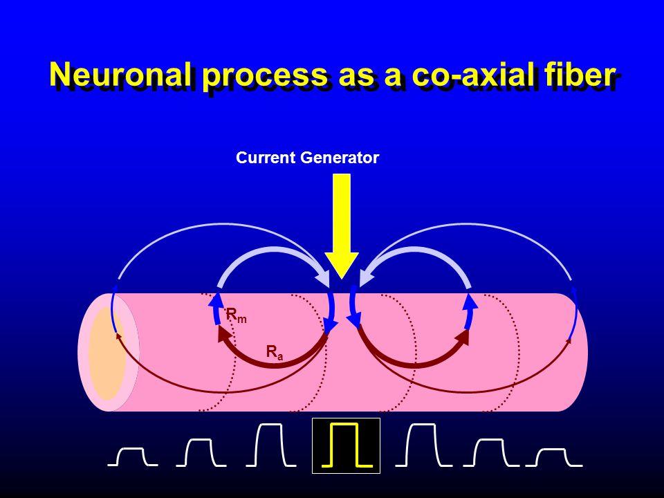 Neuronal process as a co-axial fiber Current Generator RaRa RmRm