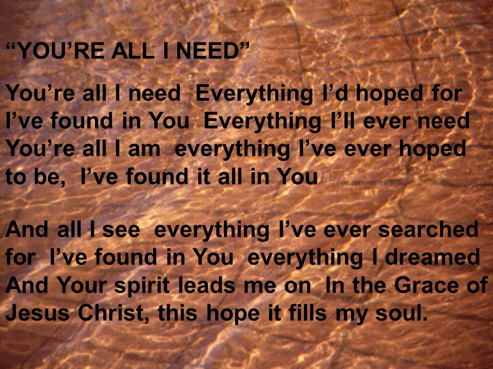YOU'RE ALL I NEED You're all I need Everything I'd hoped for I've found in You Everything I'll ever need You're all I am everything I've ever hoped to be, I've found it all in You And all I see everything I've ever searched for I've found in You everything I dreamed And Your spirit leads me on In the Grace of Jesus Christ, this hope it fills my soul.