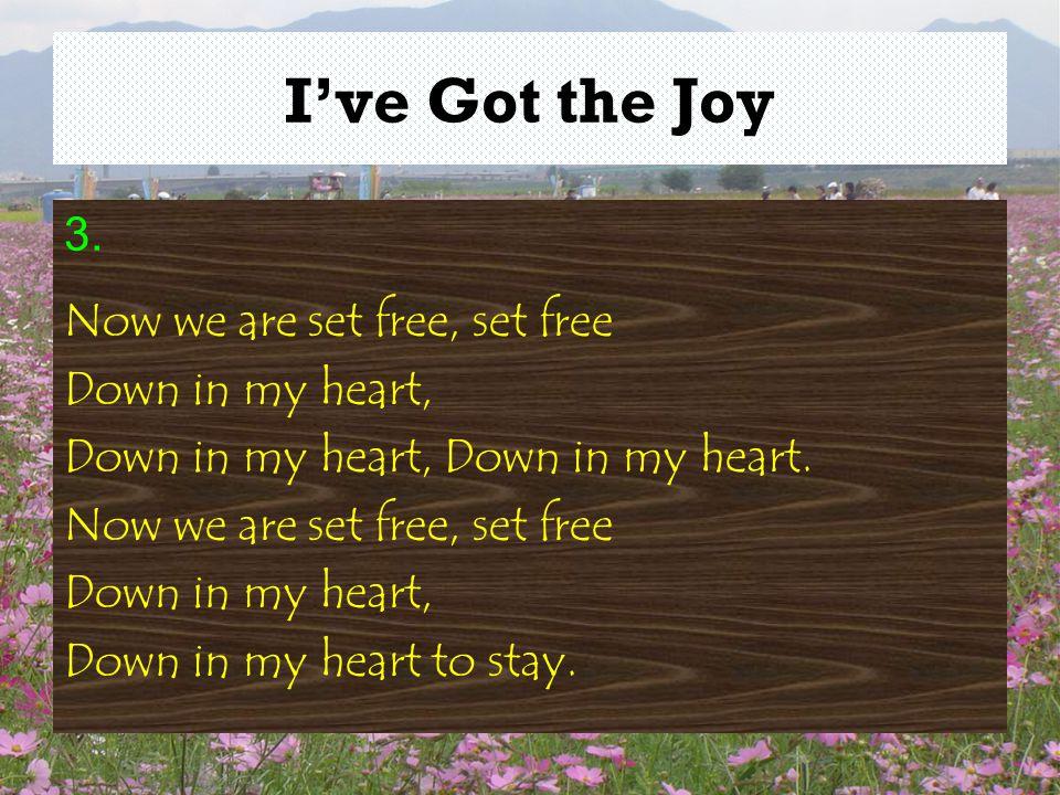 I've Got the Joy 3.