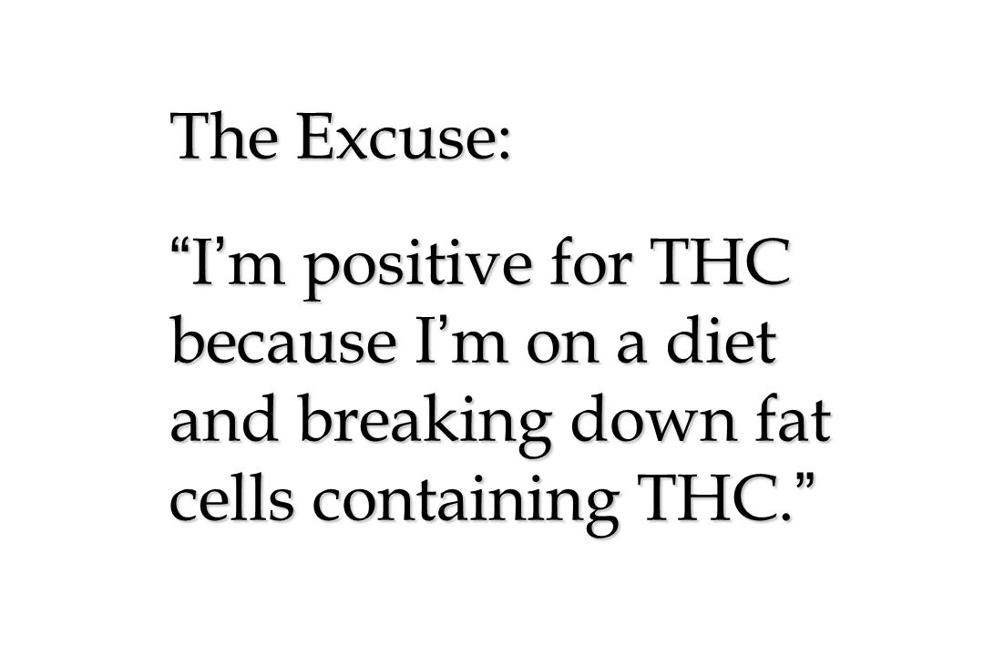 The Excuse: I ' m positive for THC because I ' m on a diet and breaking down fat cells containing THC.