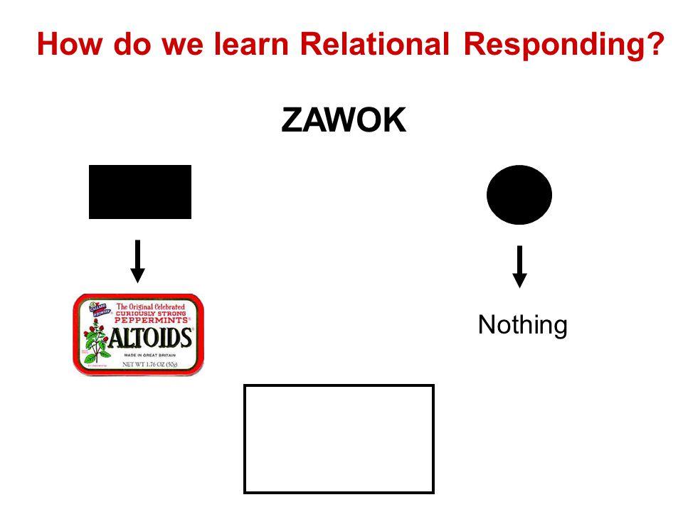 How do we learn Relational Responding Nothing ZAWOK