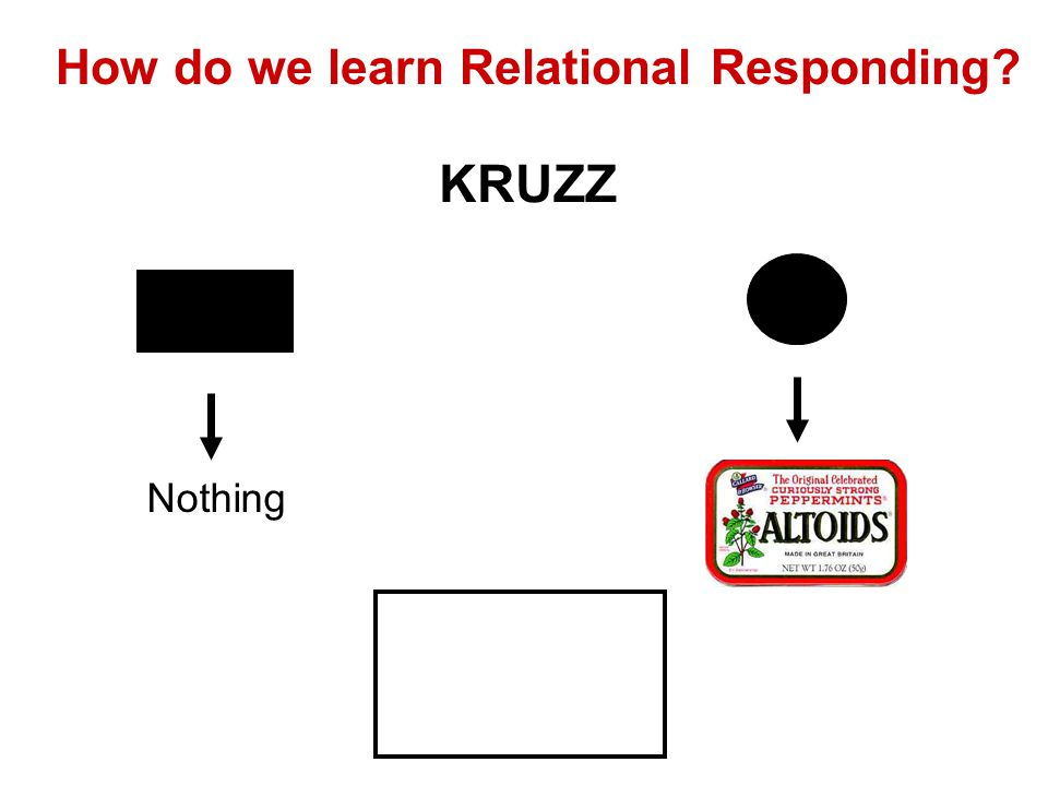 Relational cues ZAWOK becomes a Relational Cue for establishing the relation « is like » KRUZZ becomes a relational cue for establishing the relation « is different than »