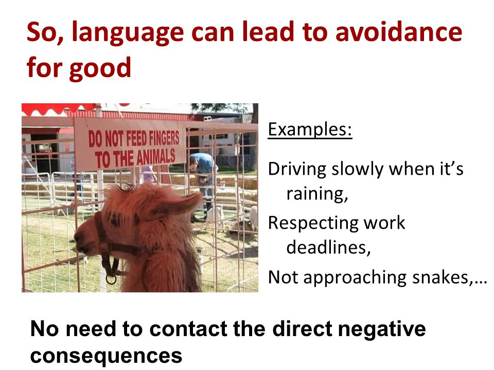 Examples: Driving slowly when it's raining, Respecting work deadlines, Not approaching snakes,… So, language can lead to avoidance for good No need to contact the direct negative consequences