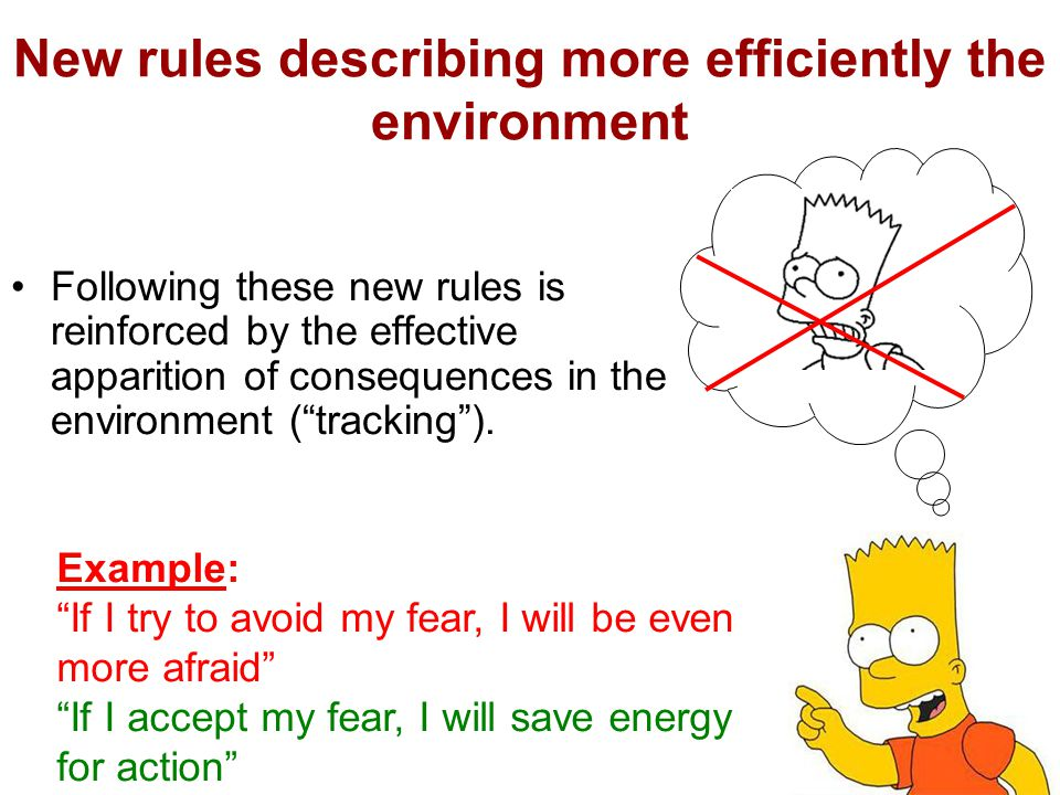 New rules describing more efficiently the environment Following these new rules is reinforced by the effective apparition of consequences in the environment ( tracking ).