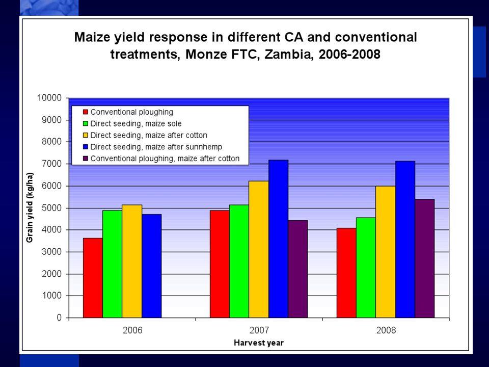 C I M M Y T MR International Maize and Wheat Improvement Center