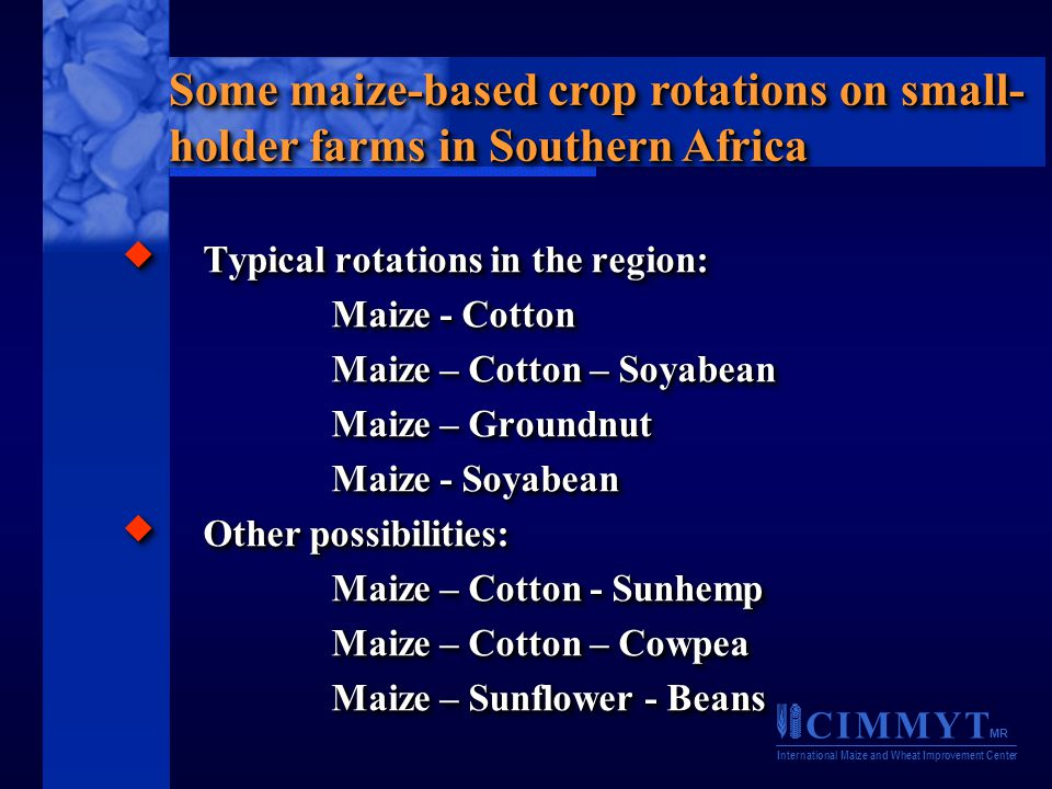 C I M M Y T MR International Maize and Wheat Improvement Center  Typical rotations in the region: Maize - Cotton Maize – Cotton – Soyabean Maize – Groundnut Maize - Soyabean  Other possibilities: Maize – Cotton - Sunhemp Maize – Cotton - Sunhemp Maize – Cotton – Cowpea Maize – Sunflower - Beans  Typical rotations in the region: Maize - Cotton Maize – Cotton – Soyabean Maize – Groundnut Maize - Soyabean  Other possibilities: Maize – Cotton - Sunhemp Maize – Cotton - Sunhemp Maize – Cotton – Cowpea Maize – Sunflower - Beans Some maize-based crop rotations on small- holder farms in Southern Africa