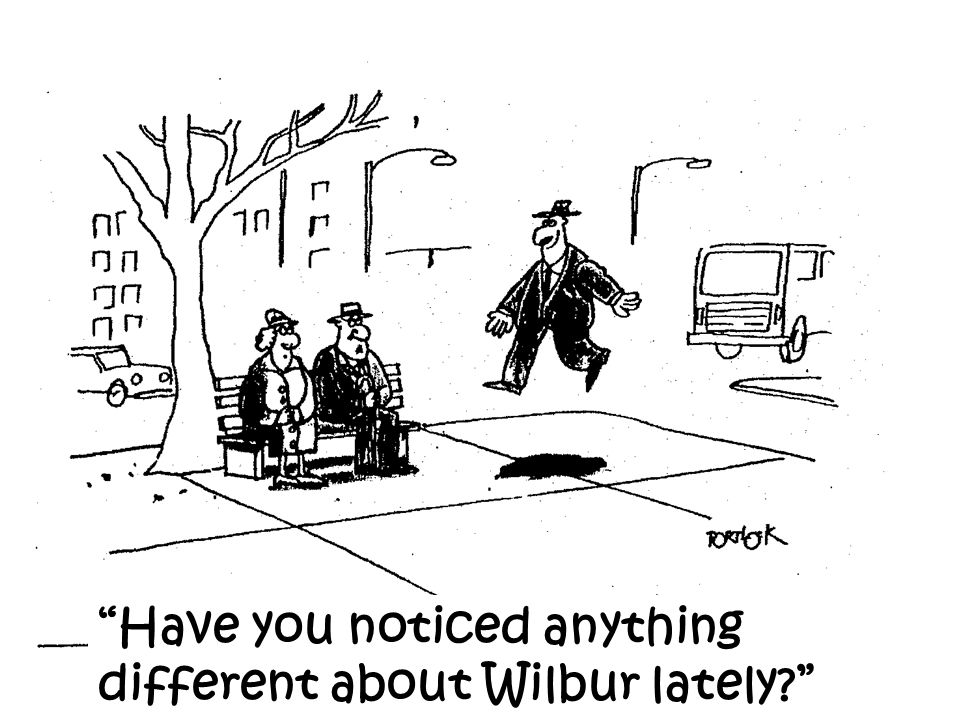 Have you noticed anything different about Wilbur lately?