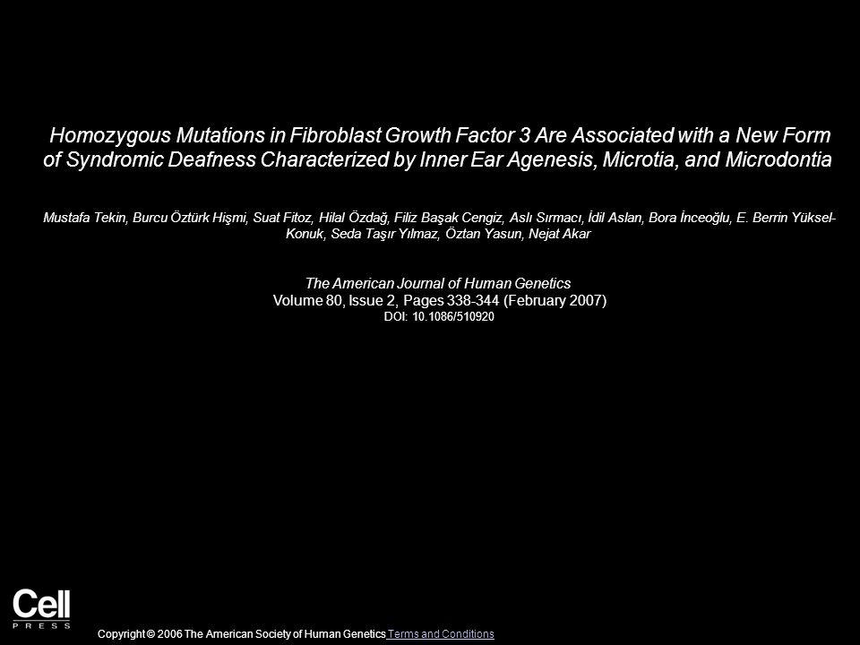 Homozygous Mutations in Fibroblast Growth Factor 3 Are Associated with a New Form of Syndromic Deafness Characterized by Inner Ear Agenesis, Microtia, and Microdontia Mustafa Tekin, Burcu Öztürk Hişmi, Suat Fitoz, Hilal Özdağ, Filiz Başak Cengiz, Aslı Sırmacı, İdil Aslan, Bora İnceoğlu, E.