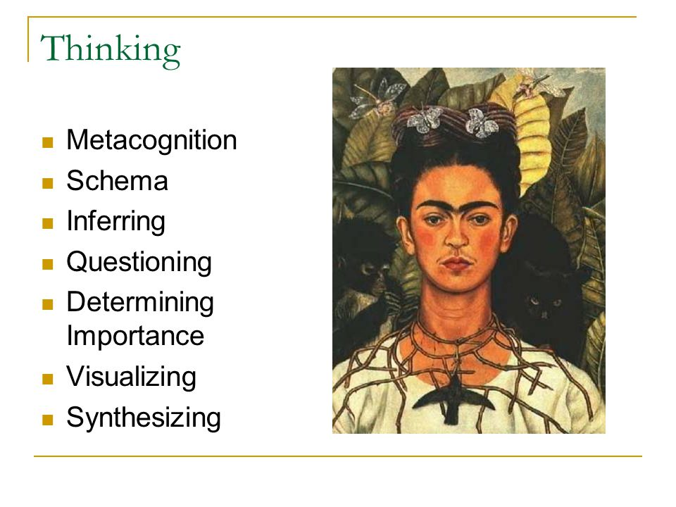 Thinking Metacognition Schema Inferring Questioning Determining Importance Visualizing Synthesizing