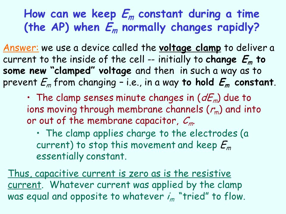 How can we keep E m constant during a time (the AP) when E m normally changes rapidly? Answer: we use a device called the voltage clamp to deliver a c