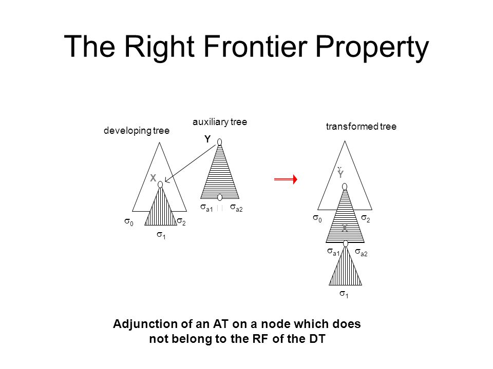 The Right Frontier Property X Y  X Y developing tree auxiliary tree transformed tree Adjunction of an AT on a node which does not belong to the RF of the DT  a2  a1 11 00 11 00  a2  a1 22 Y 22