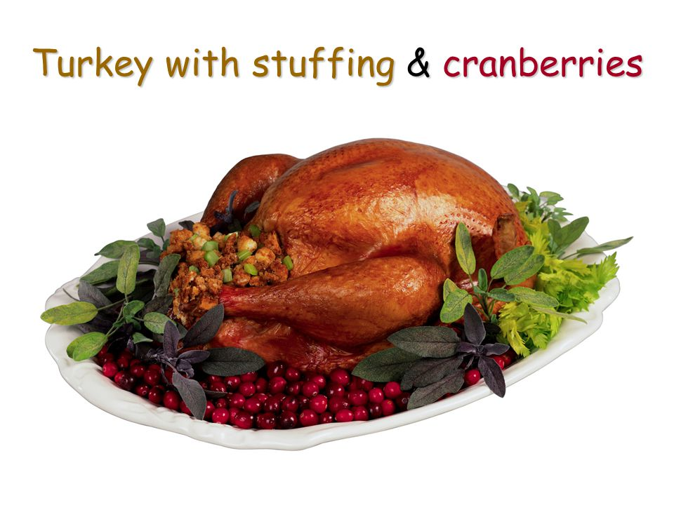 Turkey with stuffing & cranberries