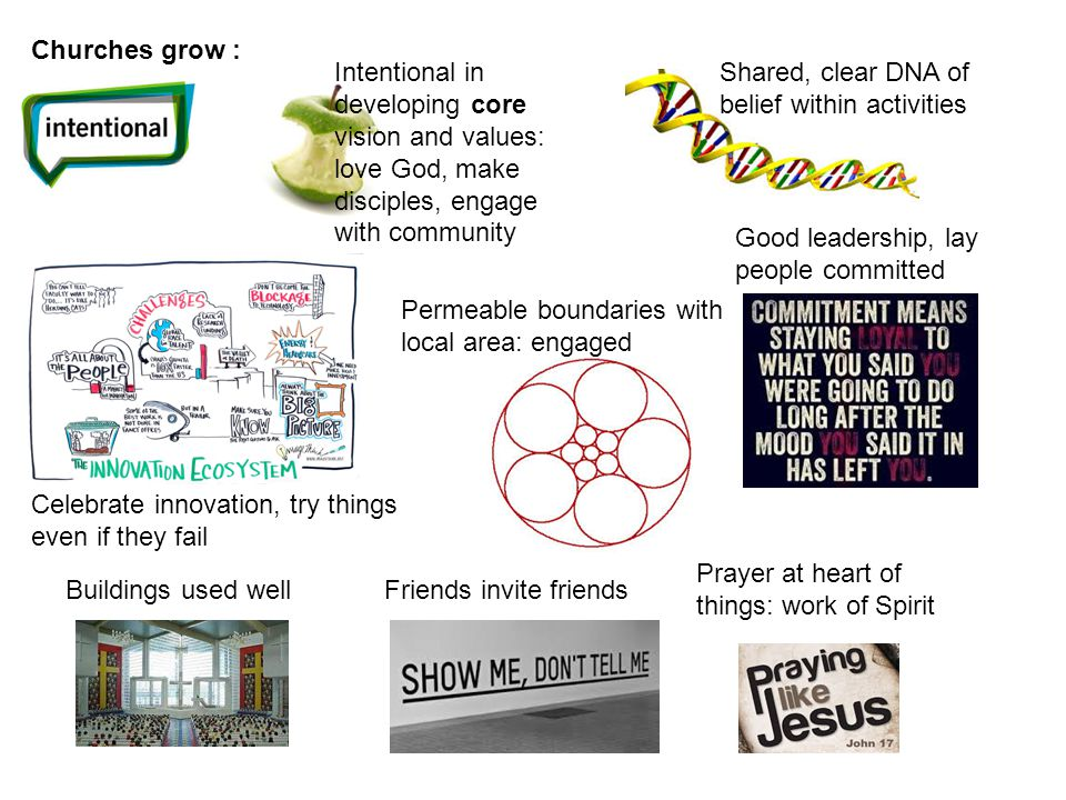 Intentional in developing core vision and values: love God, make disciples, engage with community Shared, clear DNA of belief within activities Celebrate innovation, try things even if they fail Permeable boundaries with local area: engaged Good leadership, lay people committed Prayer at heart of things: work of Spirit Friends invite friendsBuildings used well