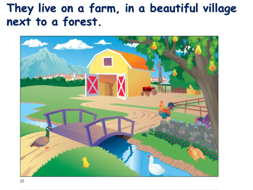 They live on a farm, in a beautiful village next to a forest.