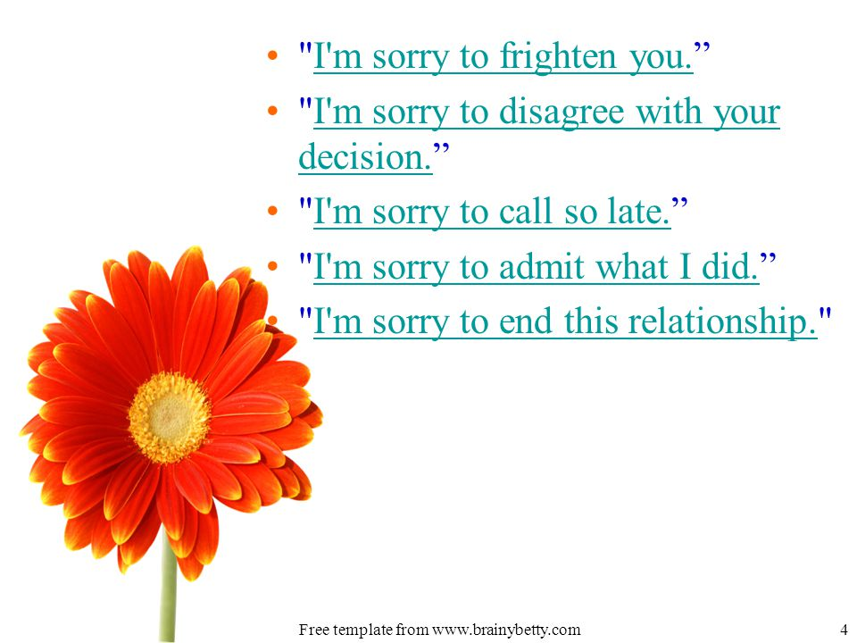 I m sorry to frighten you. I m sorry to frighten you.