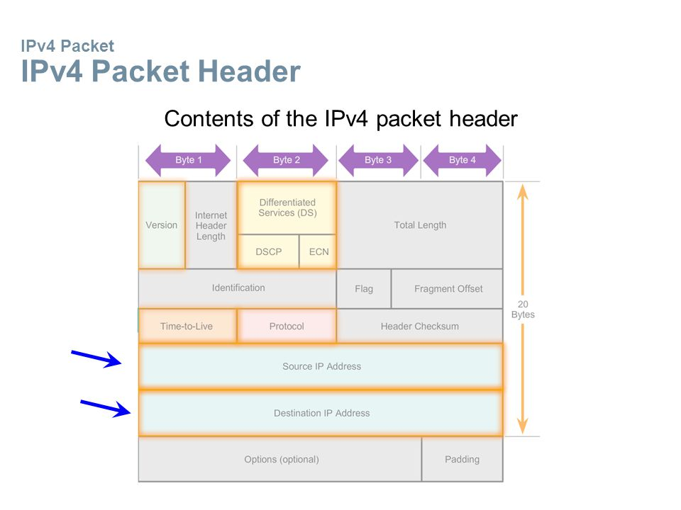 IPv4 Packet IPv4 Packet Header Contents of the IPv4 packet header