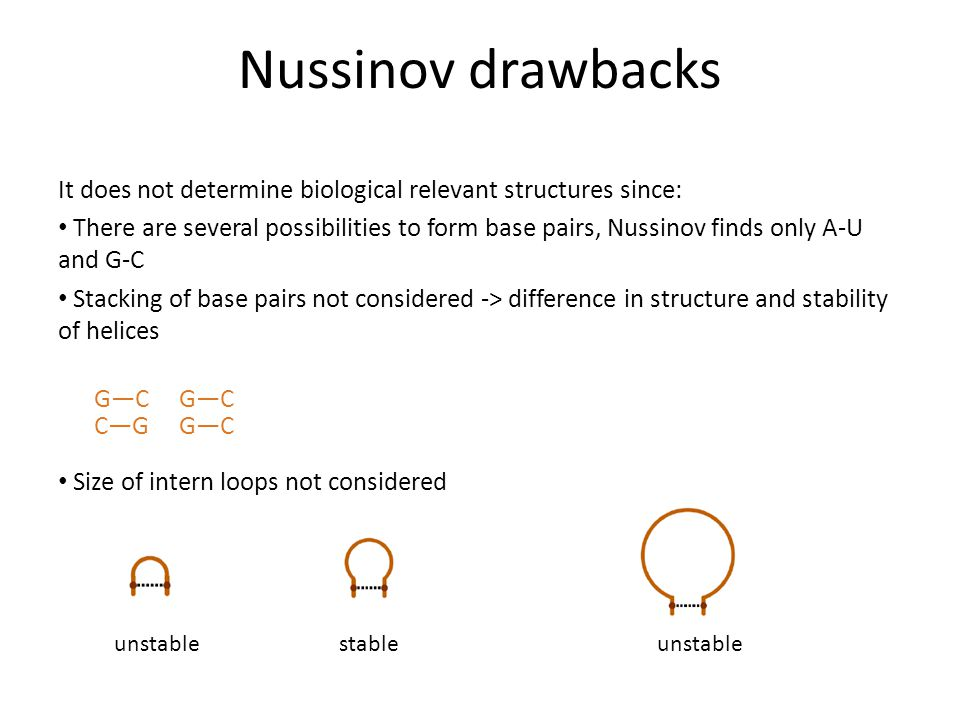 Nussinov drawbacks It does not determine biological relevant structures since: There are several possibilities to form base pairs, Nussinov finds only