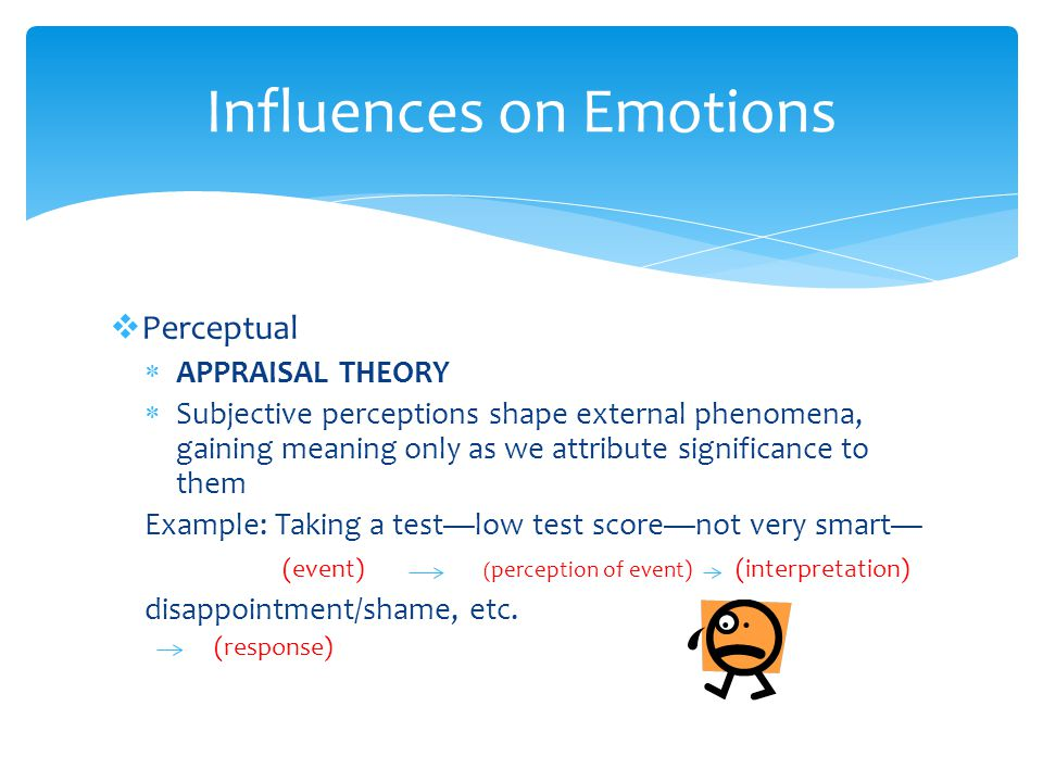  Perceptual  APPRAISAL THEORY  Subjective perceptions shape external phenomena, gaining meaning only as we attribute significance to them Example: Taking a test—low test score—not very smart— (event) ( perception of event) (interpretation) disappointment/shame, etc.