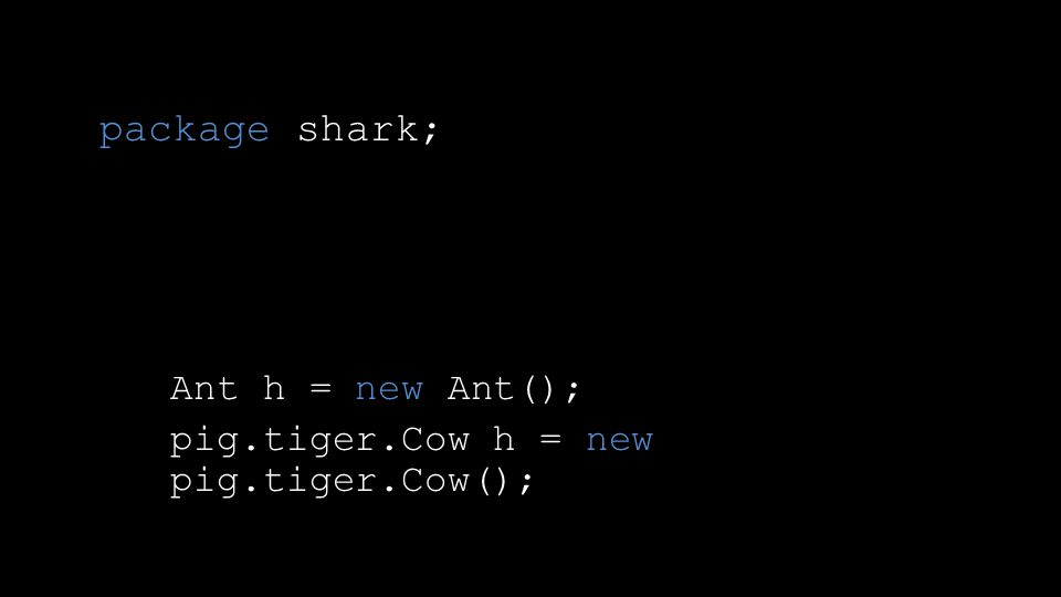 package shark; Ant h = new Ant(); pig.tiger.Cow h = new pig.tiger.Cow();