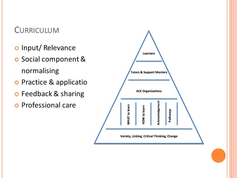 C URRICULUM Input/ Relevance Social component & normalising Practice & application Feedback & sharing Professional care
