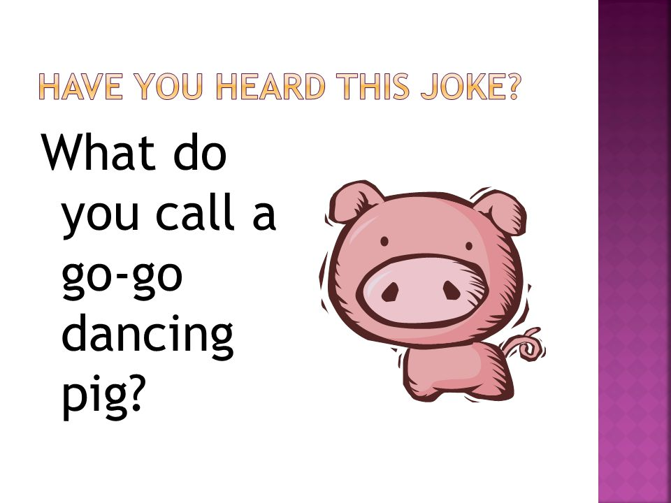 What do you call a go-go dancing pig