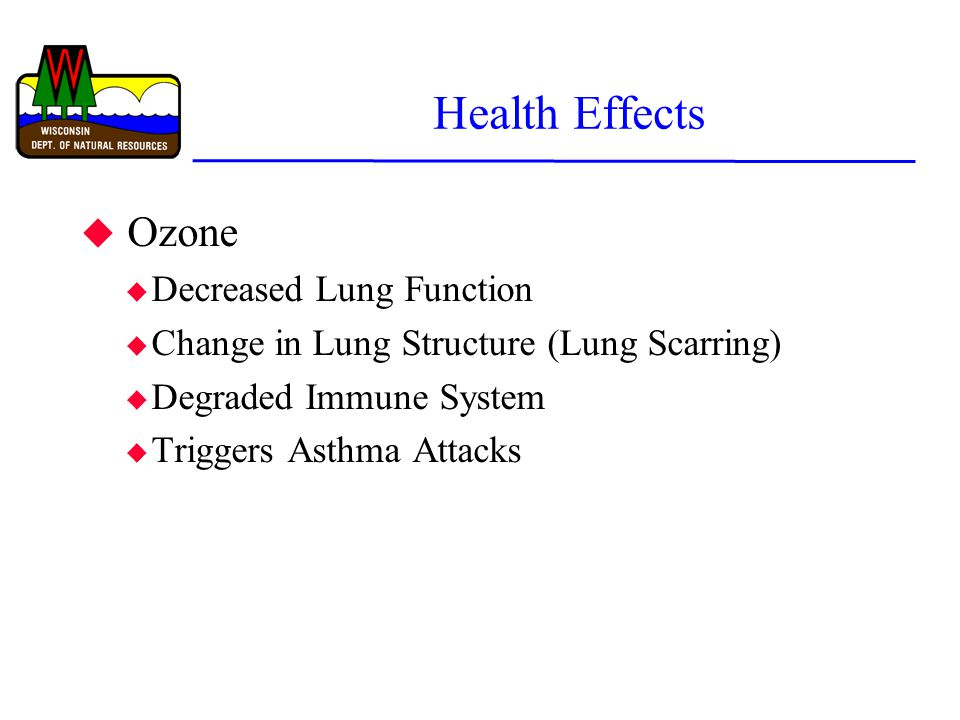 Health Effects u Ozone u Decreased Lung Function u Change in Lung Structure (Lung Scarring) u Degraded Immune System u Triggers Asthma Attacks