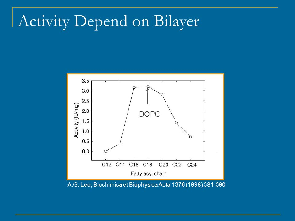 Activity Depend on Bilayer DOPC A.G. Lee, Biochimica et Biophysica Acta 1376 (1998) 381-390