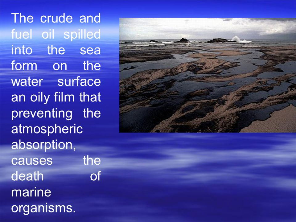 The crude and fuel oil spilled into the sea form on the water surface an oily film that preventing the atmospheric absorption, causes the death of mar