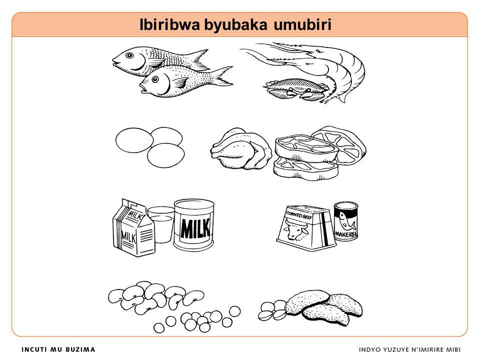 Ibiribwa byubaka umubiri