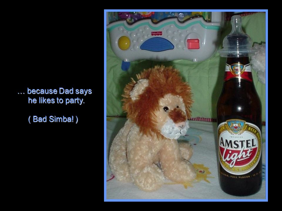 … because Dad says he likes to party. he likes to party. ( Bad Simba! ) ( Bad Simba! )
