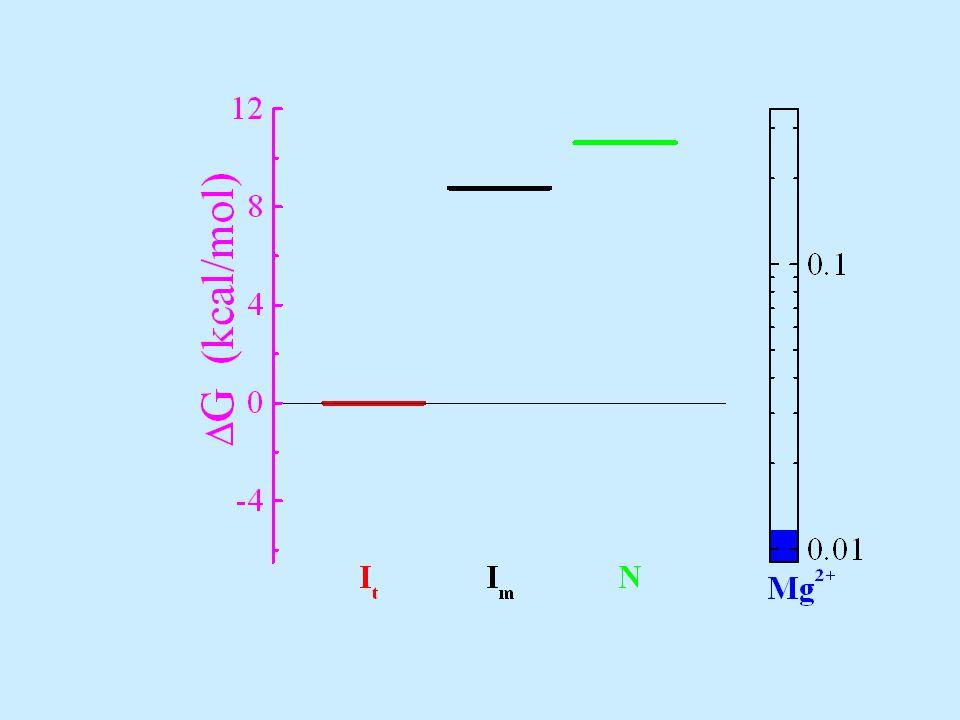 R g = 60 Å R g = 38 Å 50% Mg 2+ conc.