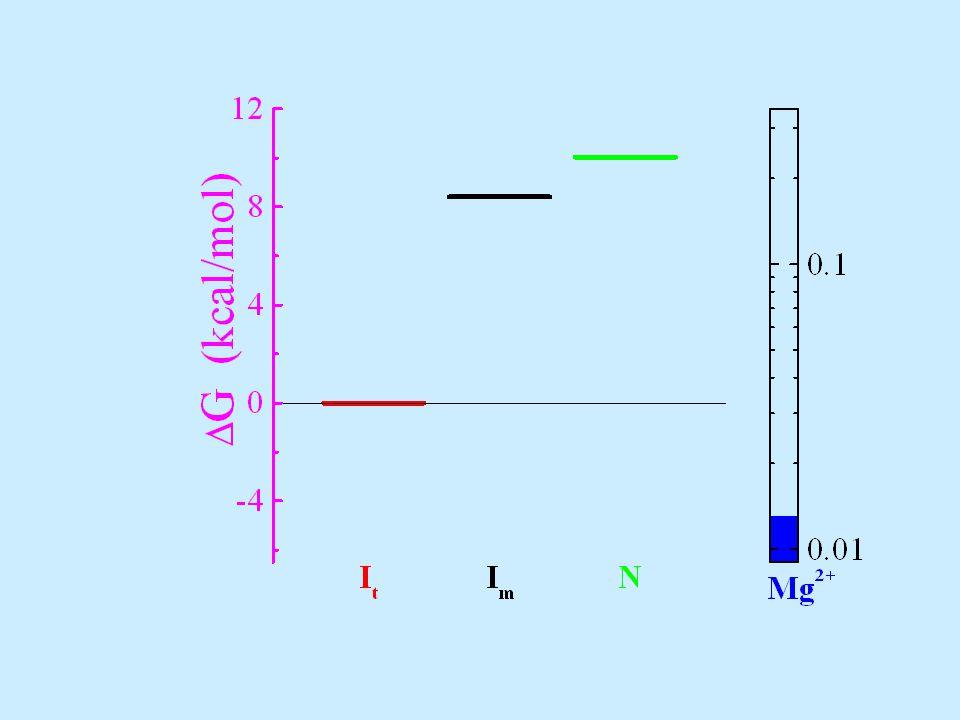 Mg 2+ conc. reaches K Mg (I m -to-N) first R g = 60 Å 99.98% 0.01% Neither I m nor N populates yet