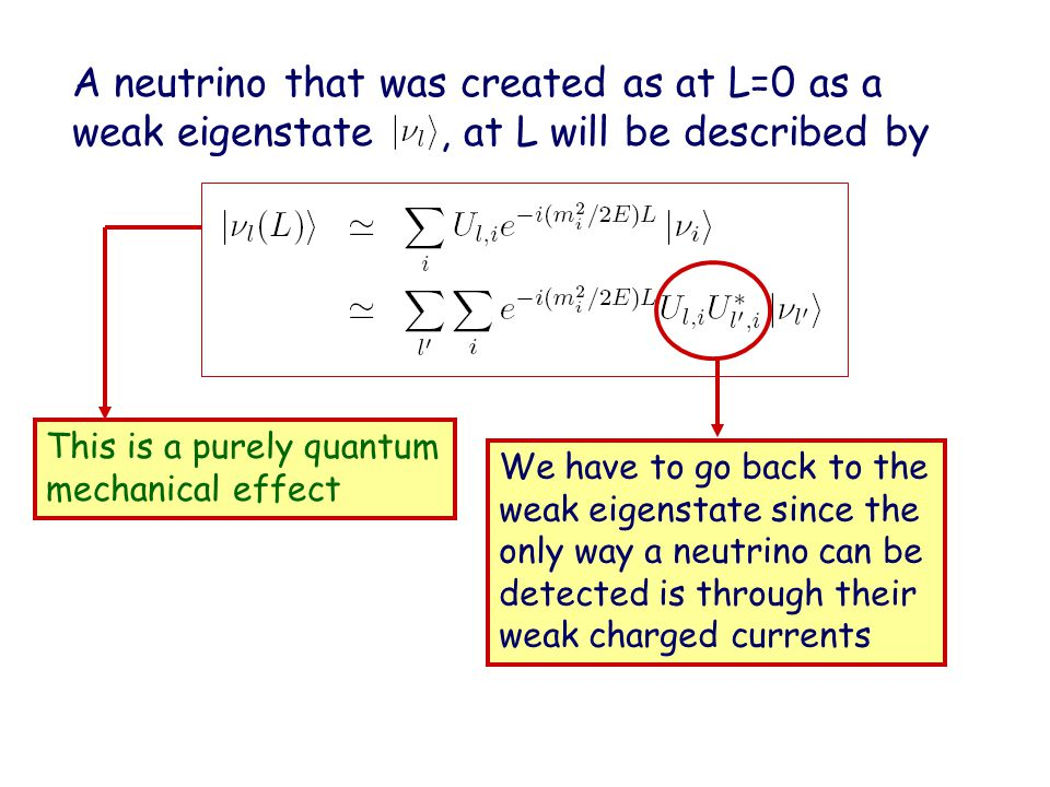A neutrino that was created as at L=0 as a weak eigenstate, at L will be described by We have to go back to the weak eigenstate since the only way a neutrino can be detected is through their weak charged currents This is a purely quantum mechanical effect