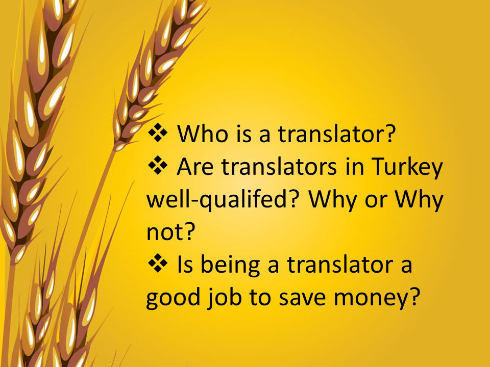  Who is a translator.  Are translators in Turkey well-qualifed.