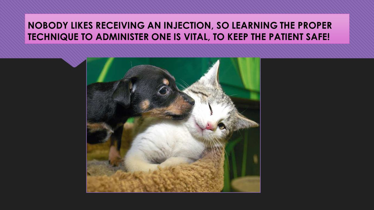 NOBODY LIKES RECEIVING AN INJECTION, SO LEARNING THE PROPER TECHNIQUE TO ADMINISTER ONE IS VITAL, TO KEEP THE PATIENT SAFE!