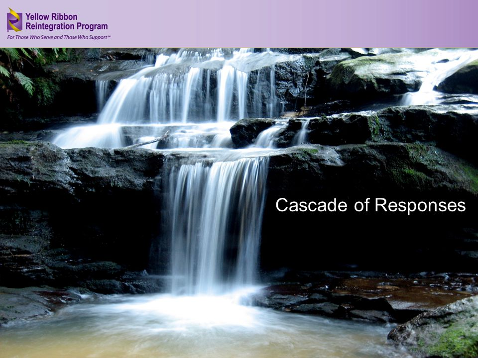 De-Stress from Deployment: Handling Stress after Deployment MAR 2013 Cascade of Responses