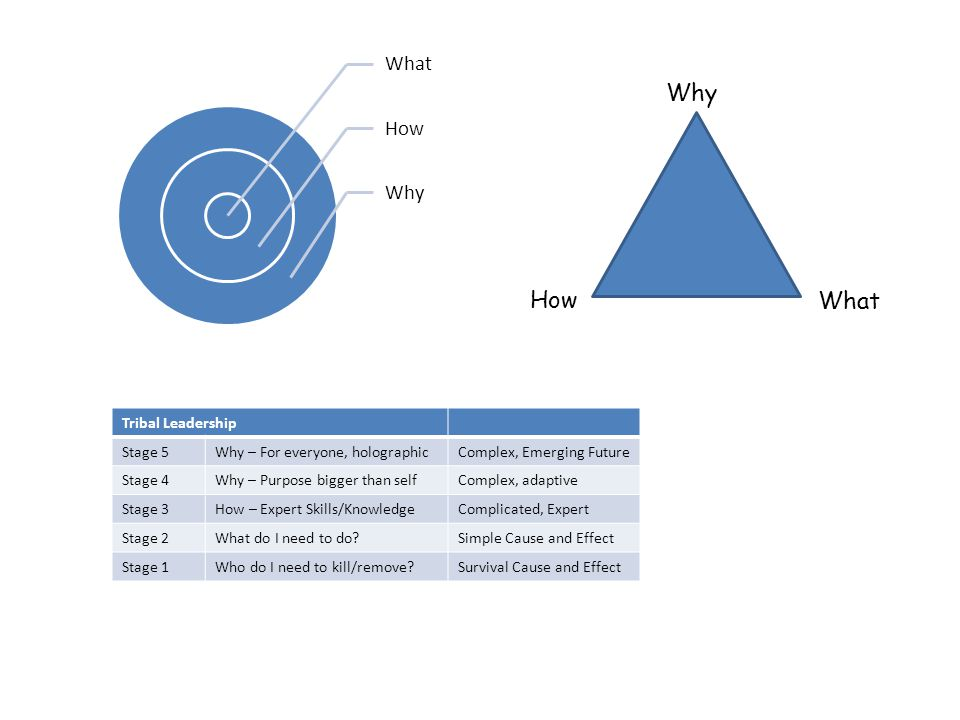 What How Why How What Tribal Leadership Stage 5Why – For everyone, holographicComplex, Emerging Future Stage 4Why – Purpose bigger than selfComplex, adaptive Stage 3How – Expert Skills/KnowledgeComplicated, Expert Stage 2What do I need to do Simple Cause and Effect Stage 1Who do I need to kill/remove Survival Cause and Effect