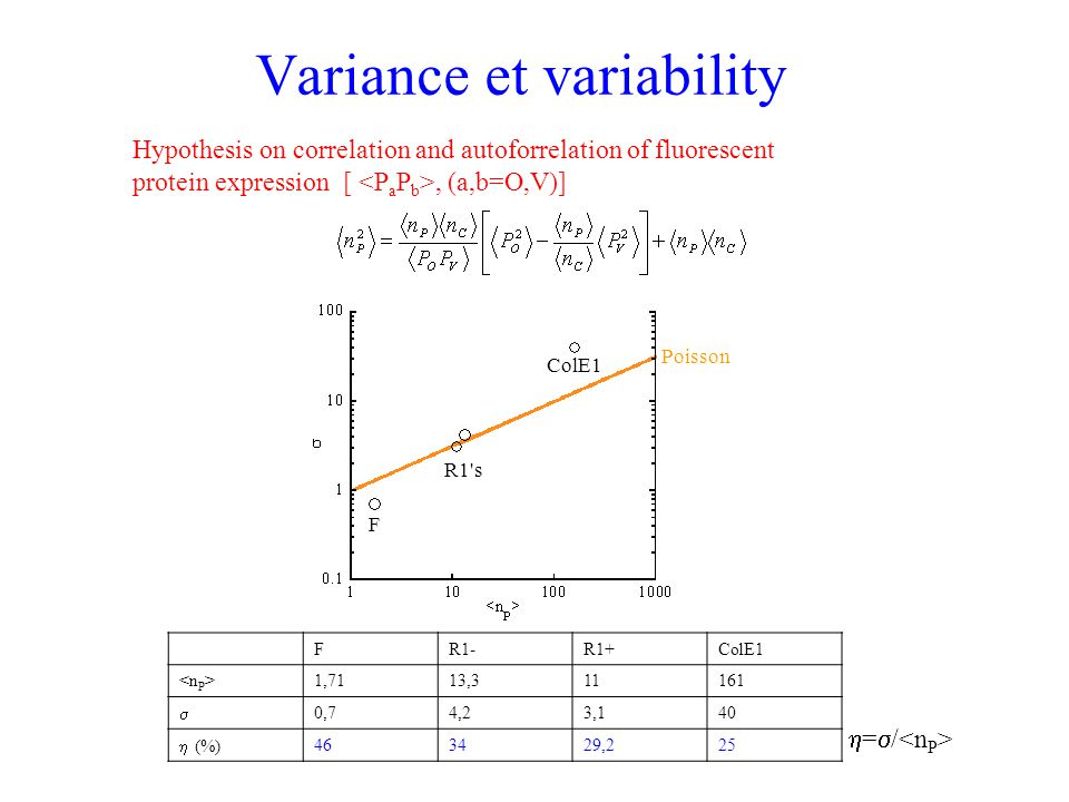 Variance et variability FR1-R1+ColE1 1,7113,311161  0,74,23,140  (%) 463429,225  =  / Hypothesis on correlation and autoforrelation of fluorescen