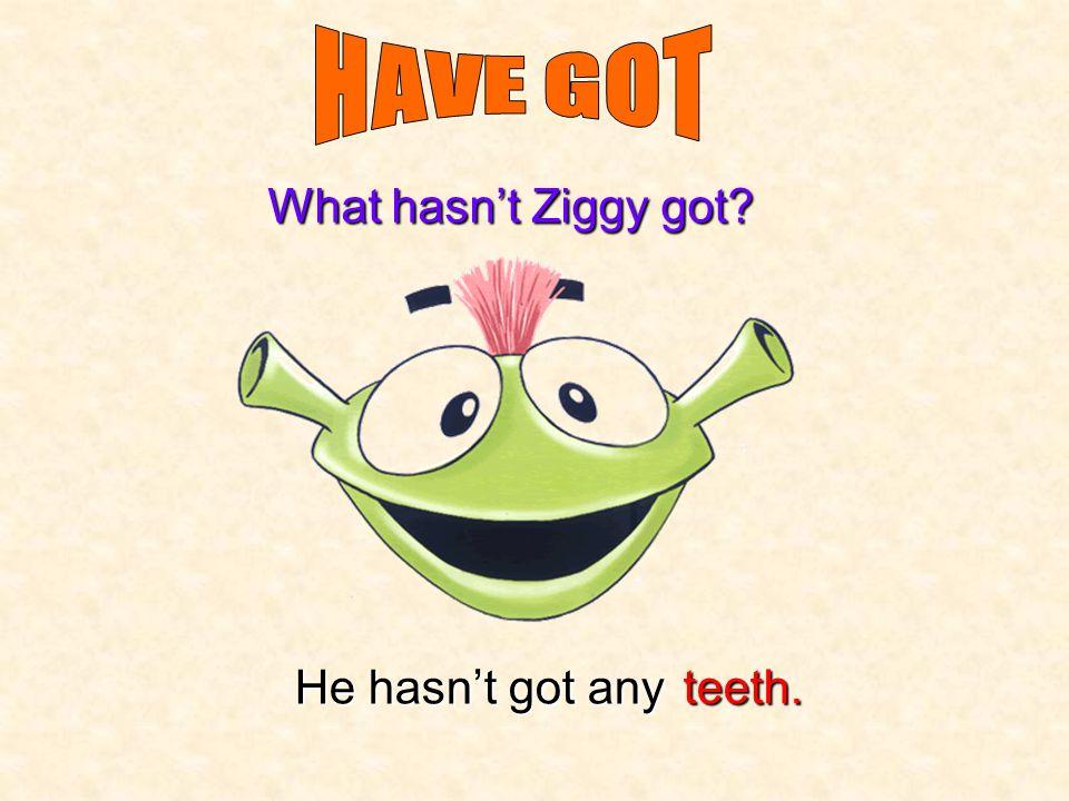 He hasn't got any What hasn't Ziggy got? ears.