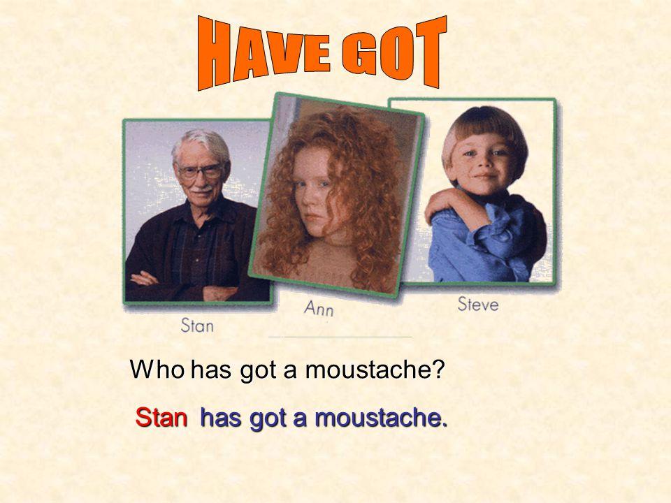Who has got glasses? Stan has got glasses.