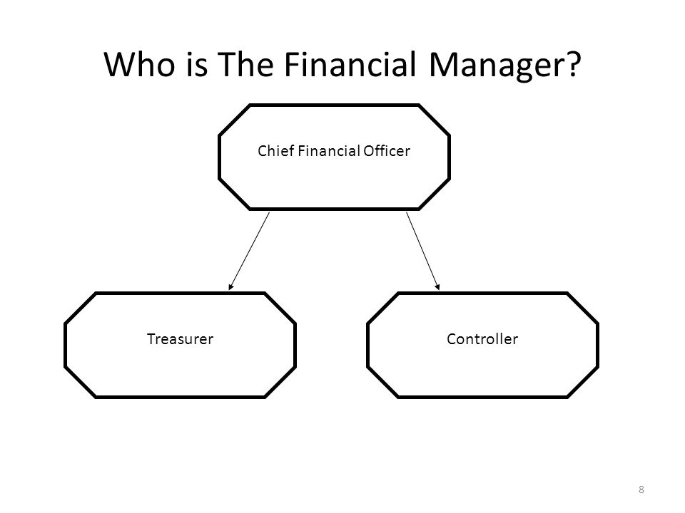 Who is The Financial Manager? Chief Financial Officer TreasurerController 8