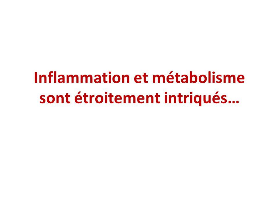 Inflammation et métabolisme sont étroitement intriqués…