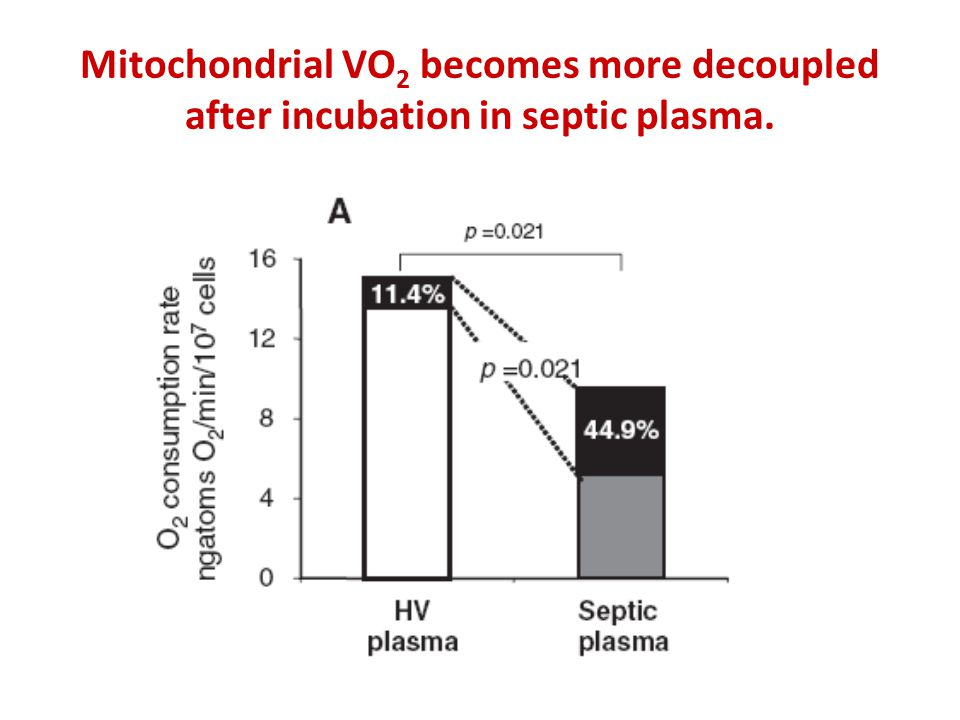 Mitochondrial VO 2 becomes more decoupled after incubation in septic plasma.