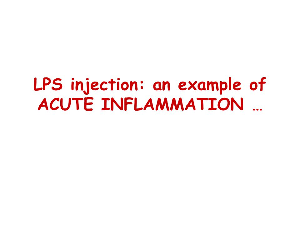 LPS injection: an example of ACUTE INFLAMMATION …